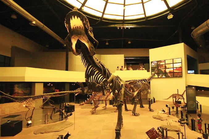 museum-photo